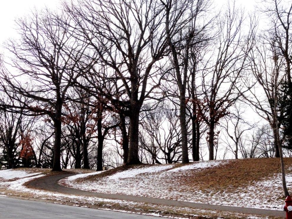 Windom Park, Northeast Minneapolis