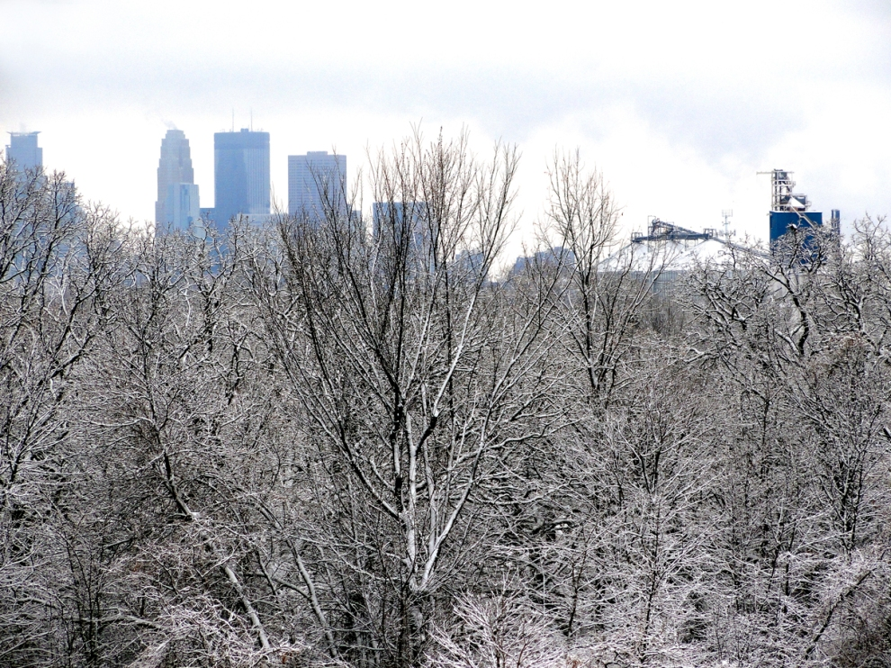 View from northeast Minneapolis, February 2013, by Gayla Ellis