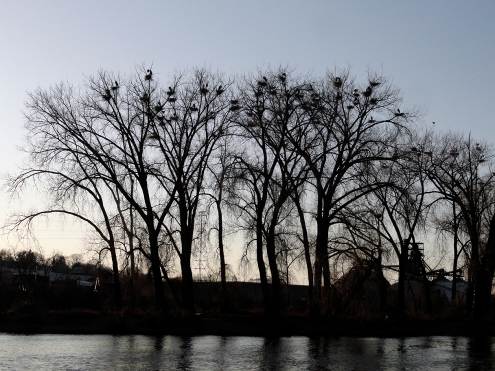 Minneapolis, April 2013, by Gayla Ellis